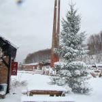 Impresje zimowe 01