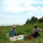 piknik na lonie przyrody